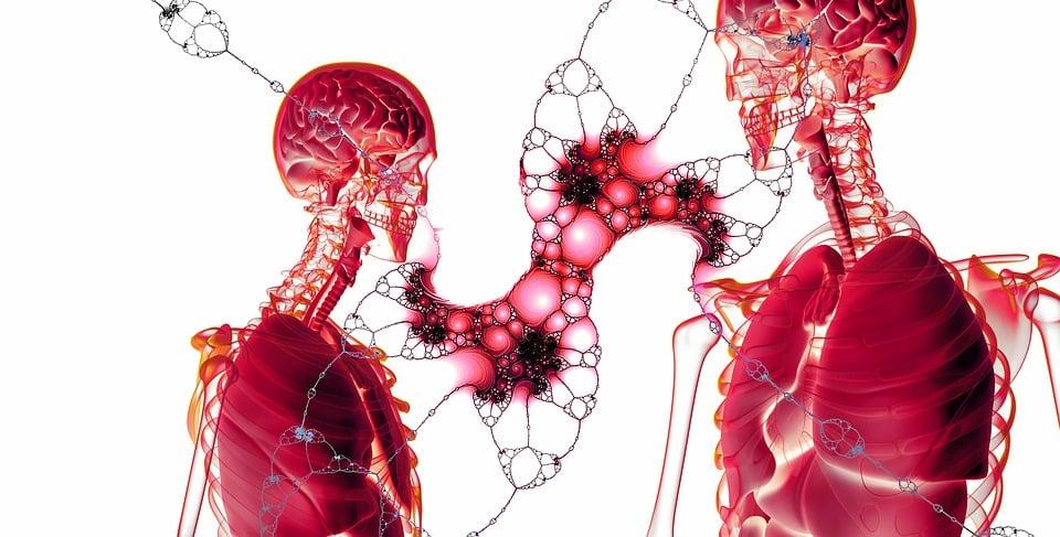 Pyélonéphrite sans fièvre : les symptômes à reconnaître
