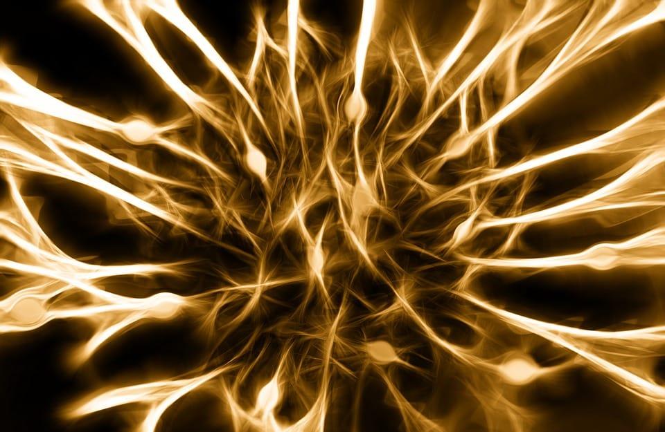 nerfs moteurs