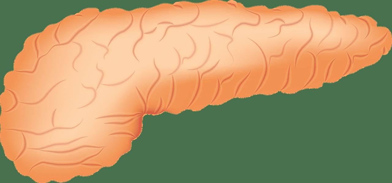 les causes connues de la pancréatite
